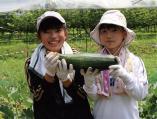 福島の子どもたち 写真2